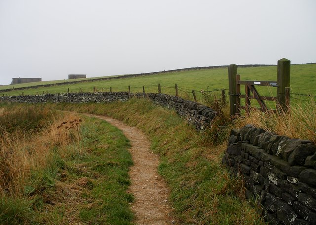 Cleveland Way above Common Cliff