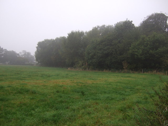 Grazing and woodland, Burton-by-Lincoln