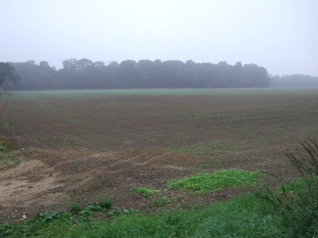 Farmland and woodland, Sand Hills