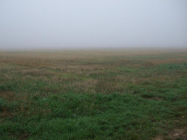 Stubble field off Middle Street (B1398)