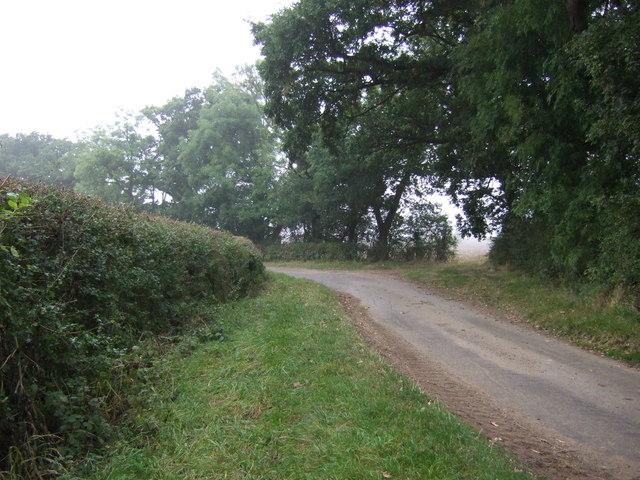 A bend in Fen Lane