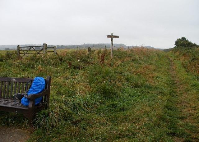 Junction of paths, Roger Trod