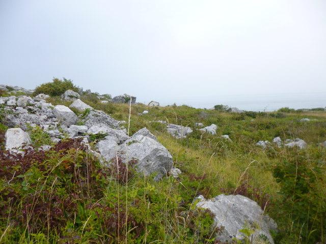 Grove, quarry waste