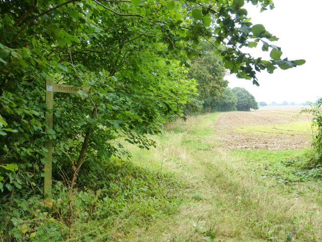 Footpath leaves Wood Hill Lane