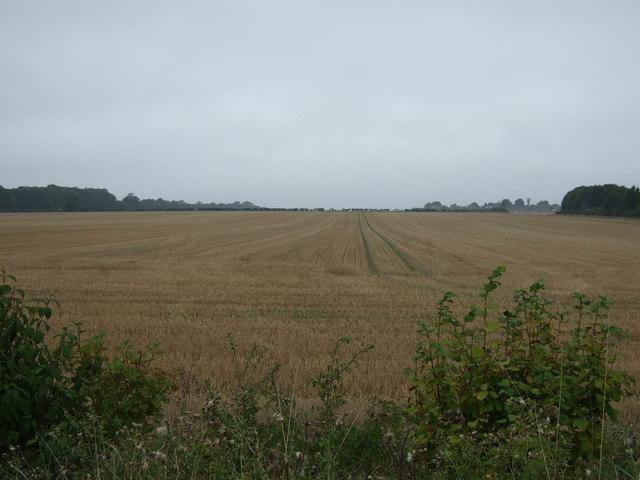 Farmland near RAF Scampton