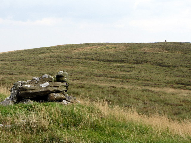 Trig point on Larriston Fells from west