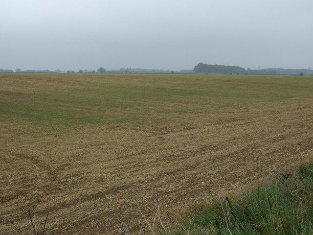 Farmland east of Ermine Street Roman Road (A15)