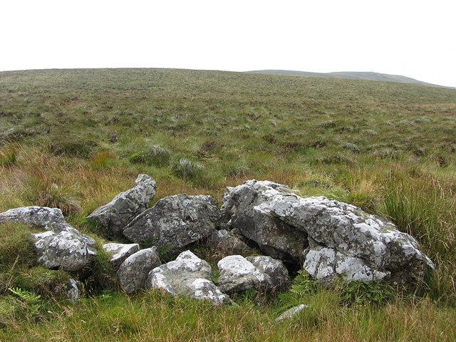 Rock outcrop on Larriston Fells