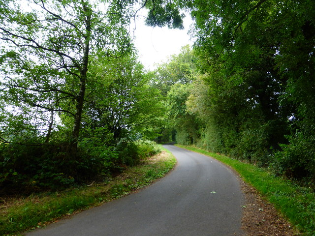 Bend on Wood Hill Lane