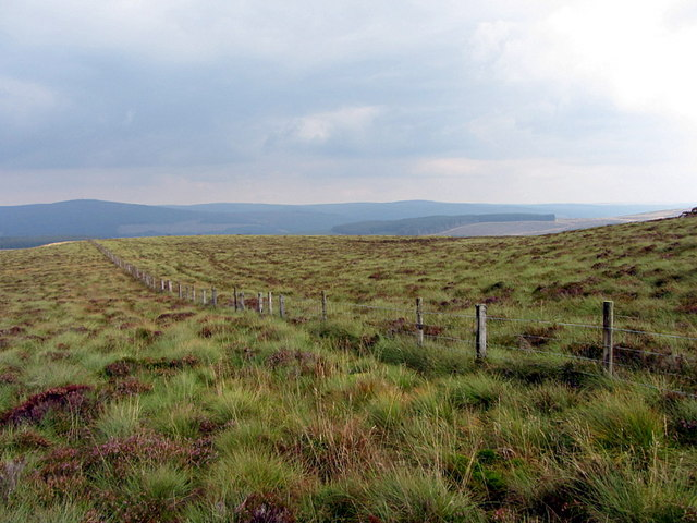 Fence along Larriston Fells