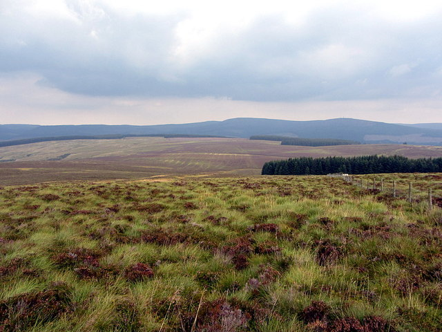 Northern end of Larriston Fells
