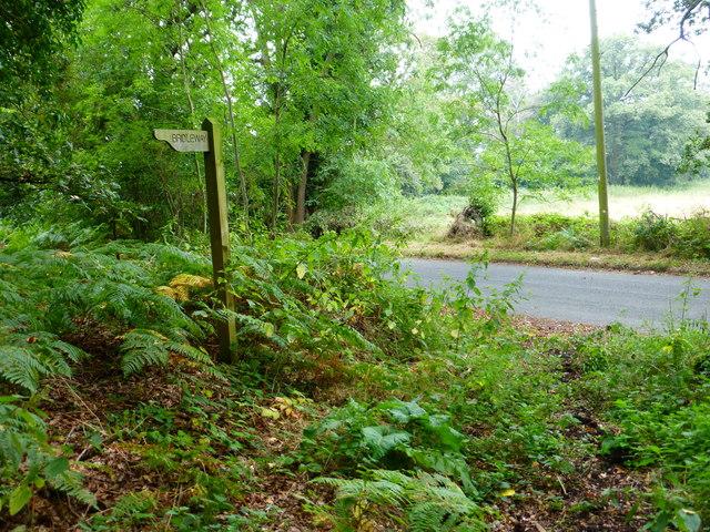 Bridleway reaches Plough Lane