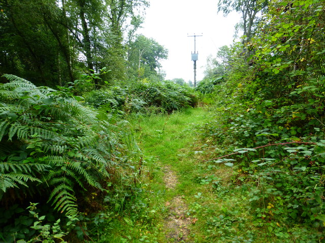 Junction on bridleway with pole ahead