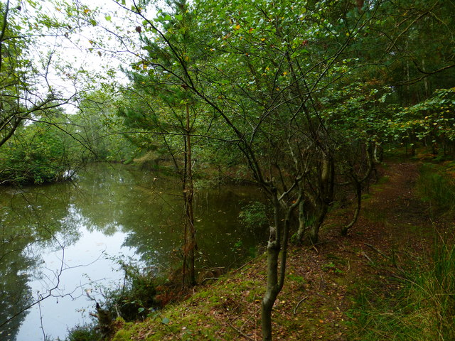 Water and woodland