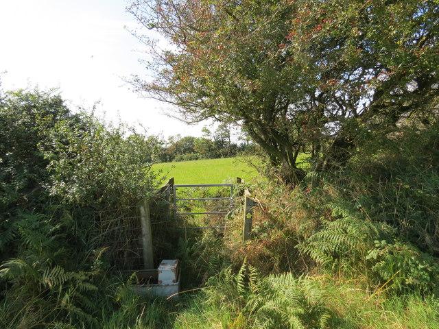 Llwybr Y Mot / New Moat Path