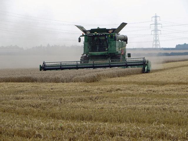 Harvesting near North Wold Farm