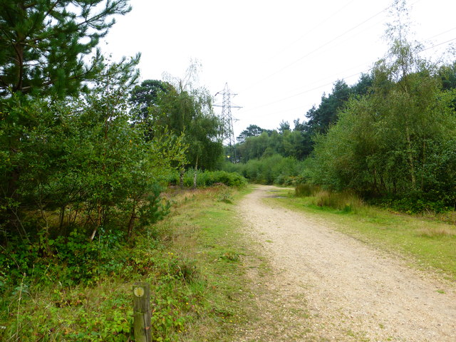 Looking northwards on footpath from bridleway junction