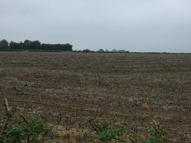 Farmland near Scothern