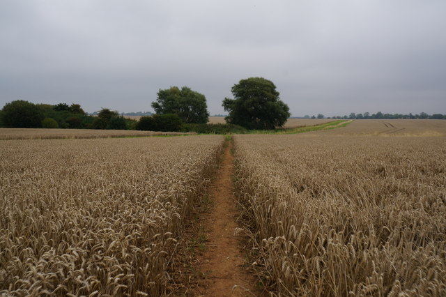 Path leading towards Humberston