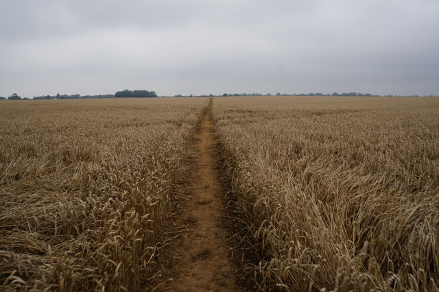 Path leading towards Humberston