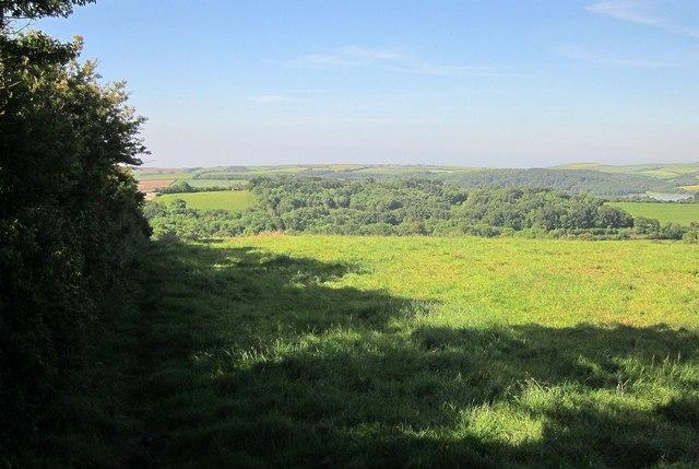 Field by Trevollard Lane