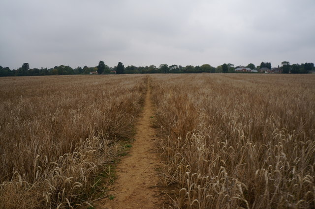 Path leading to New Waltham