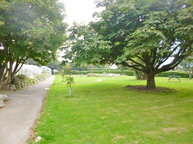 Grove, garden