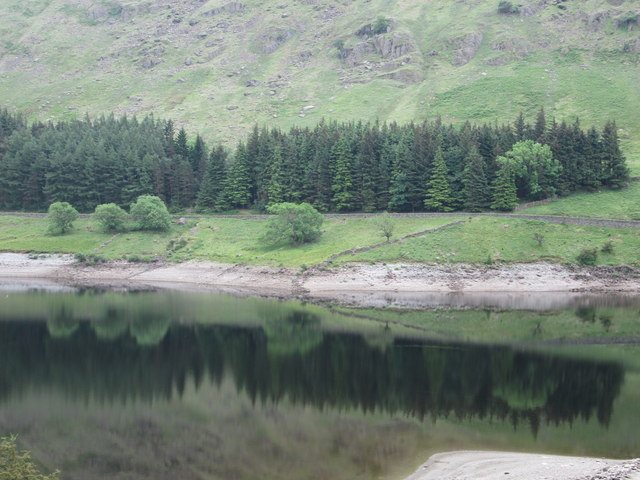 Reflections of coniferous trees at Mardale, Haweswater