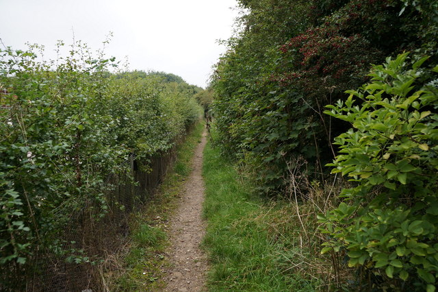 Path leading to Hewitt's Avenue