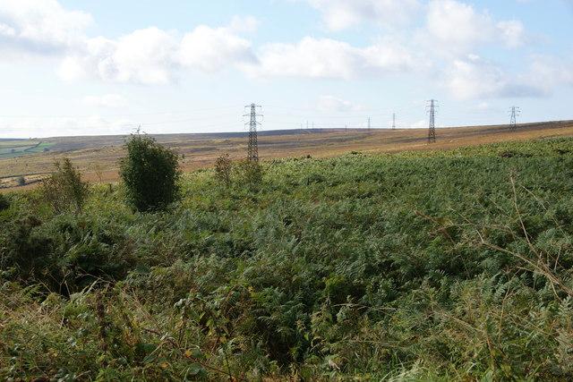 Pylons crossing Sleights Moor