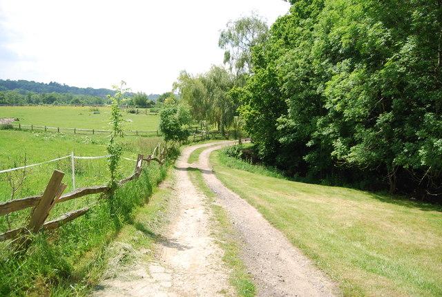 Track near Homestall