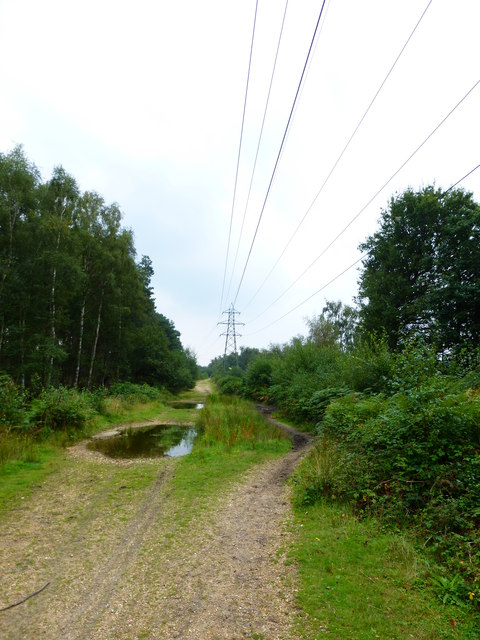 Looking along pylon line east of Bramshill Park