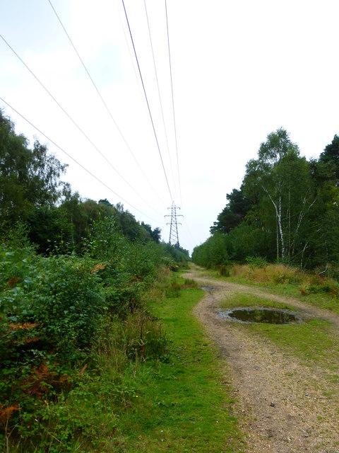 Pylon east of Bramshill Park