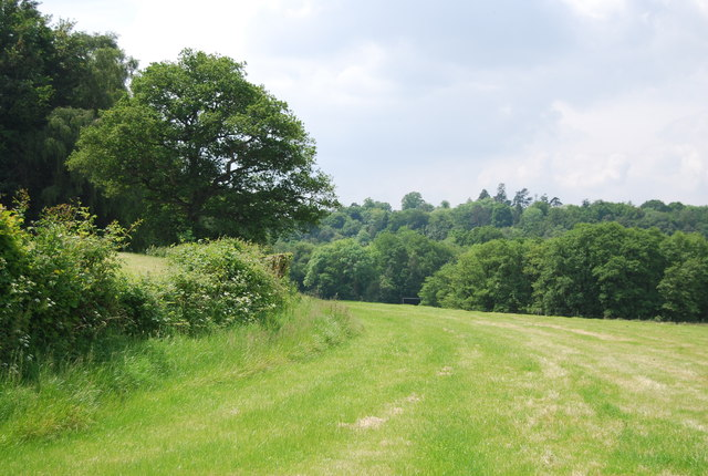 Footpath to Ashurst Wood