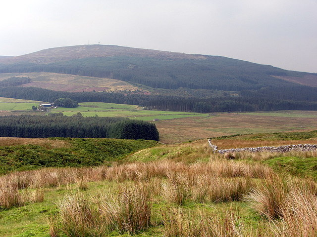 Descending Hawkhope Hole on the Scottish side of the Border wall