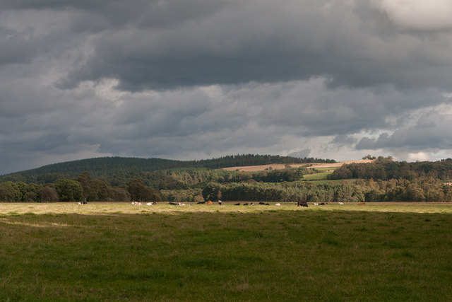 Fields at The Haughs of Birse
