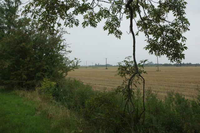 Farmland by Wainfleet Bank