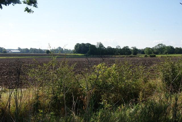 Flat farmland near Stockton on the Forest