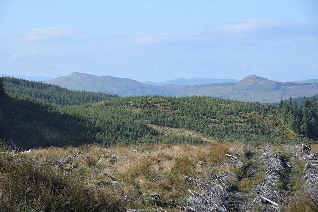 Beinn Bhàn from Inverliever Forest