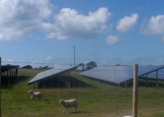 Defaid a phaneli solar / sheep and solar panels