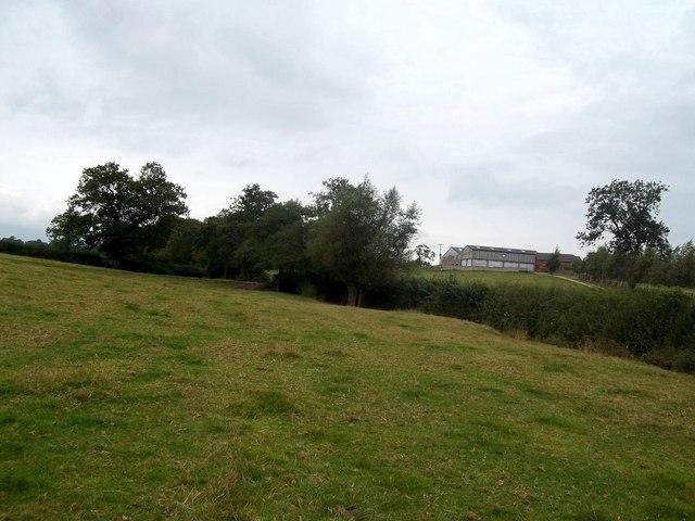 Footpath and Grassland near Malcolmsley
