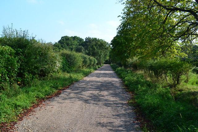 Track near Lyburn