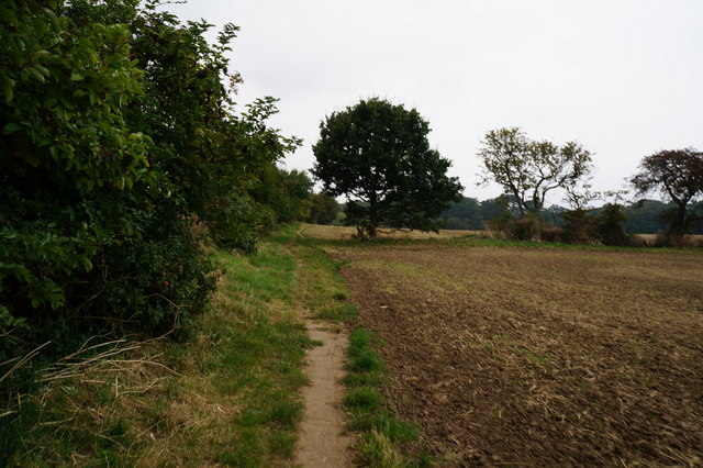 Path leading towards Weelsby Woods