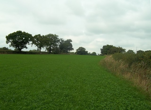 Footpath and Field near Cubley lane