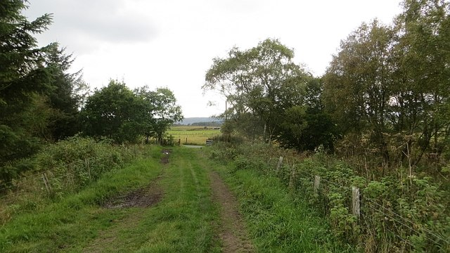 Field access
