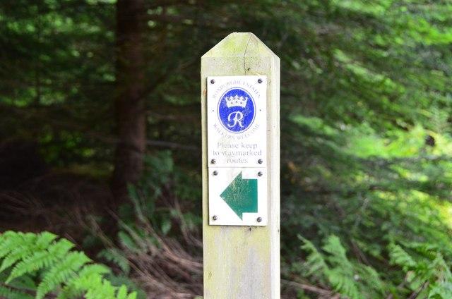 Waymark, Bowmont Forest