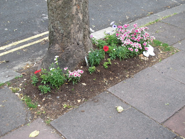 """Streets in Bloom, 2014"", Southdown Avenue, BN1"