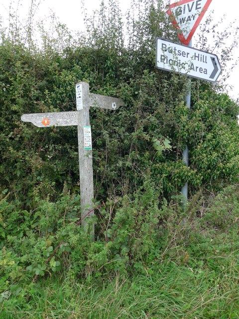 South Downs Way, Exton to Buriton (197)