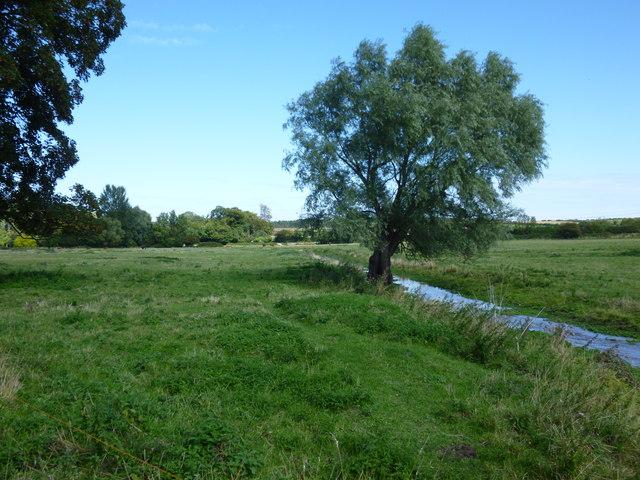 The River Burn near Nelson's birthplace, Burnham Thorpe
