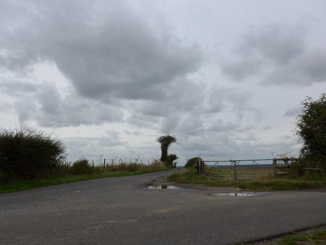 South Downs Way, Exton to Buriton (201)